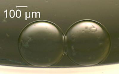 Искусственные клетки работают как батарейки