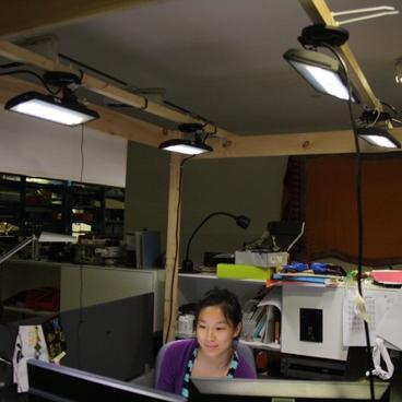 Адаптивное LED-освещение от MIT экономит до 90% электроэнергии