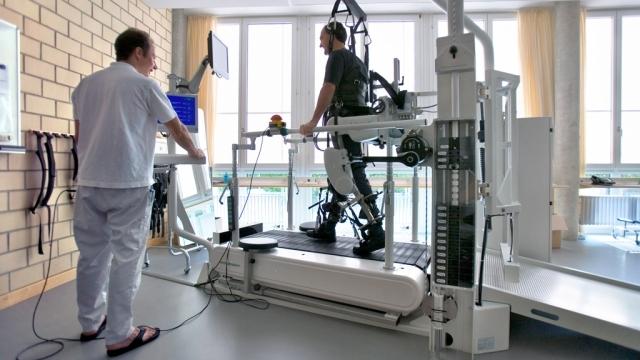 Трансплантация клеток позволила вернуть подвижность парализованным конечностям