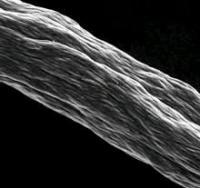 Сверхдлинные нанотрубки – будущее передающих линий