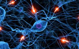 IBM разработала первый в мире искусственный нейрон